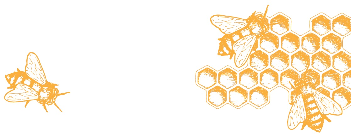 drawing of bees with honeycomb