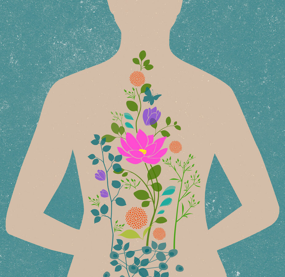 illustration of person with flowers inside their body